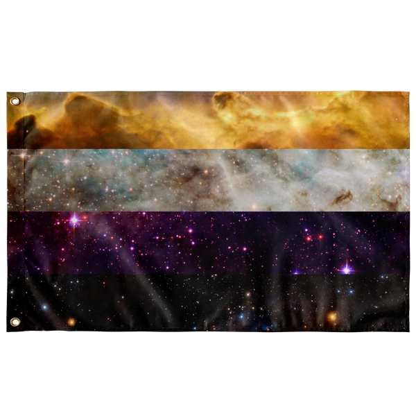 NonBinary Space Flag