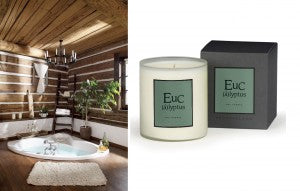 Eucalyptus Scented Candle by Archipelago