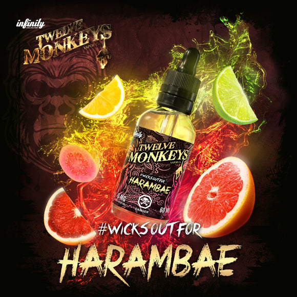 Harambae by 12 Monkeys