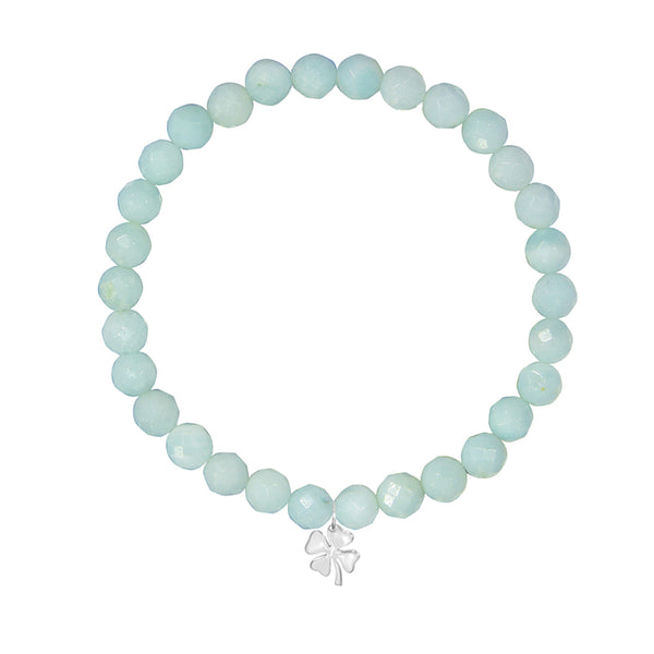 <b>Customize</b> - 6mm Amazonite <br><b>Stone of Truth</b>