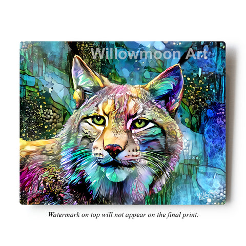 Lynx / Bobcat 8x10 Metal Art Print by Willowmoon Art