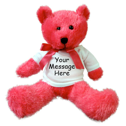 Personalized Teddy Bear - 12 inch Neon Pink Bear, Burton Plush