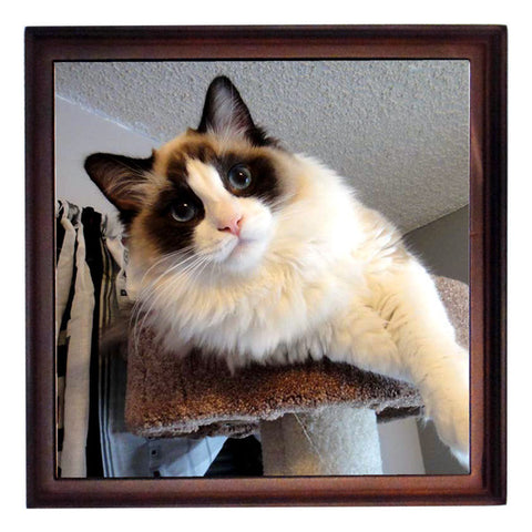 Custom Pet Photo Tile