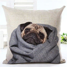 Load image into Gallery viewer, Animal Decorative Pillow Case - 450mm*450mm / 2435c - pillow case