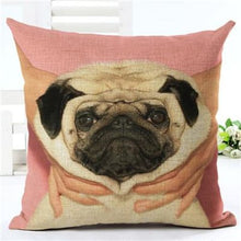 Load image into Gallery viewer, Lovely Silent Pug Dog Pillow Cover - 450mm*450mm / 2433a - pillow case