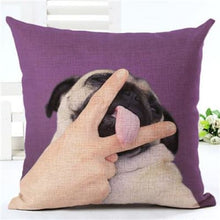Load image into Gallery viewer, Lovely Silent Pug Dog Pillow Cover - 450mm*450mm / 2433g - pillow case