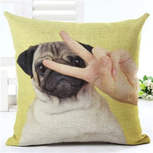 Load image into Gallery viewer, Lovely Silent Pug Dog Pillow Cover - 450mm*450mm / 2433i - pillow case