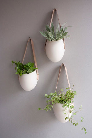 Image Source: http://www.apartmenttherapy.com/one-of-a-kind-air-plant-vesselsetsy-roundup-175035