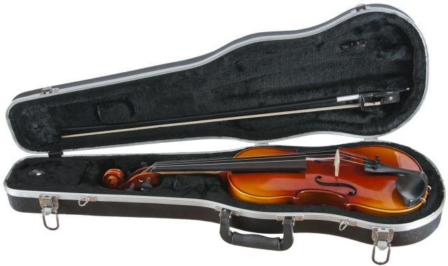 Amati's Maestro Viola Outfit | Includes Case & Bow