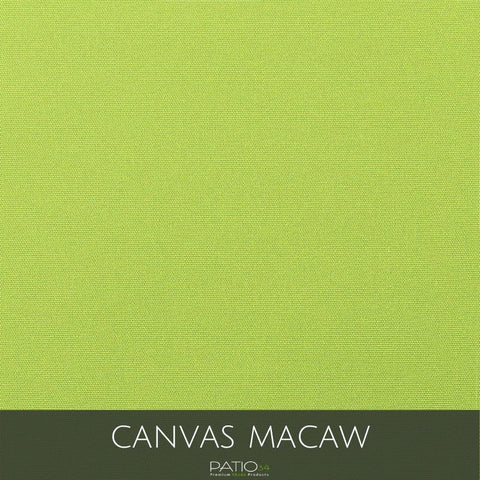 Canvas Macaw