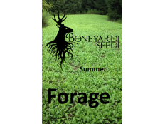 Summer Forage