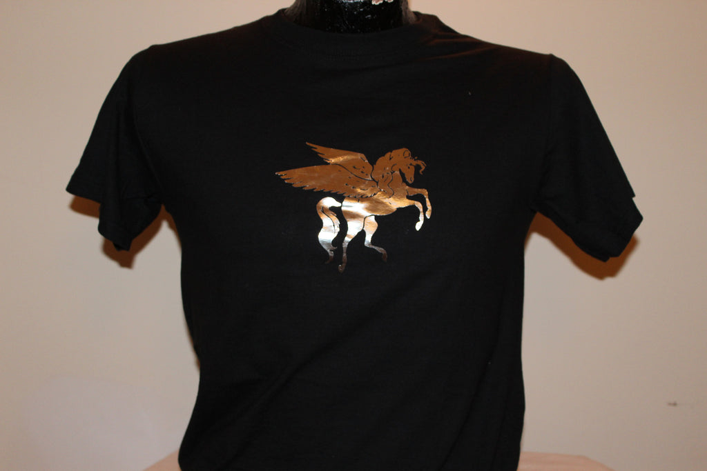 T-Shirt, Child's, with Pegasus - Arabian Knights Costumes
