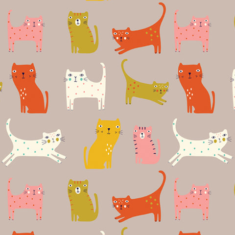 Cool For Cats - Catastic - Dashwood Studio