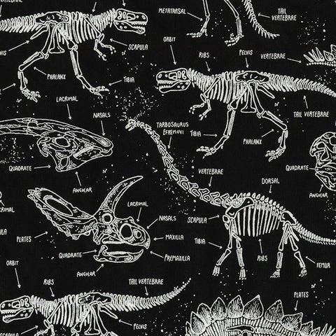 Dino Skeletons (Glow in dark) - Timeless Treasures