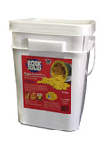 Xsorb Paint Solidifier 4 Gal Pail #XT16R