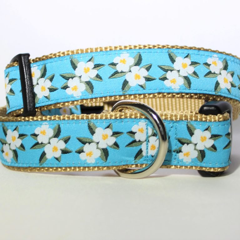 Beach Biscuit Collars