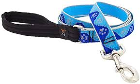 Lupine High Lights Reflective Blue Paws Leash, 6 ft