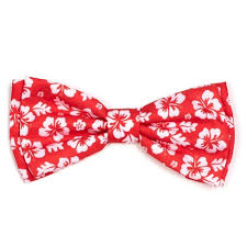"Worthy Dog Bow Tie, ""Aloha Flower"", Coral"