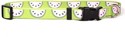 Yellow Dog Designs Collar, Wonderful Watermelon