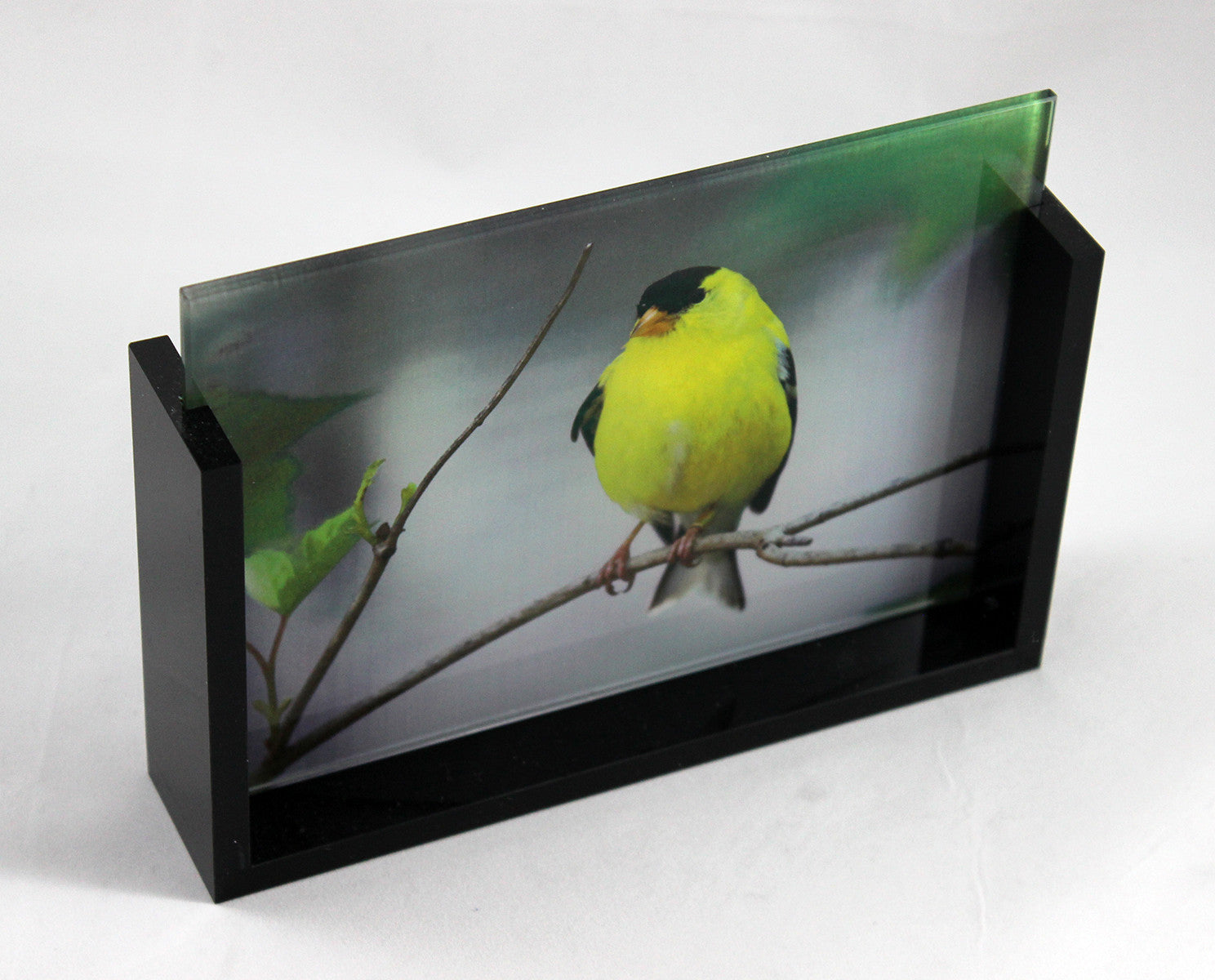 Acrylic Slide Stand w/ Frosted Glass - 5 x 7""