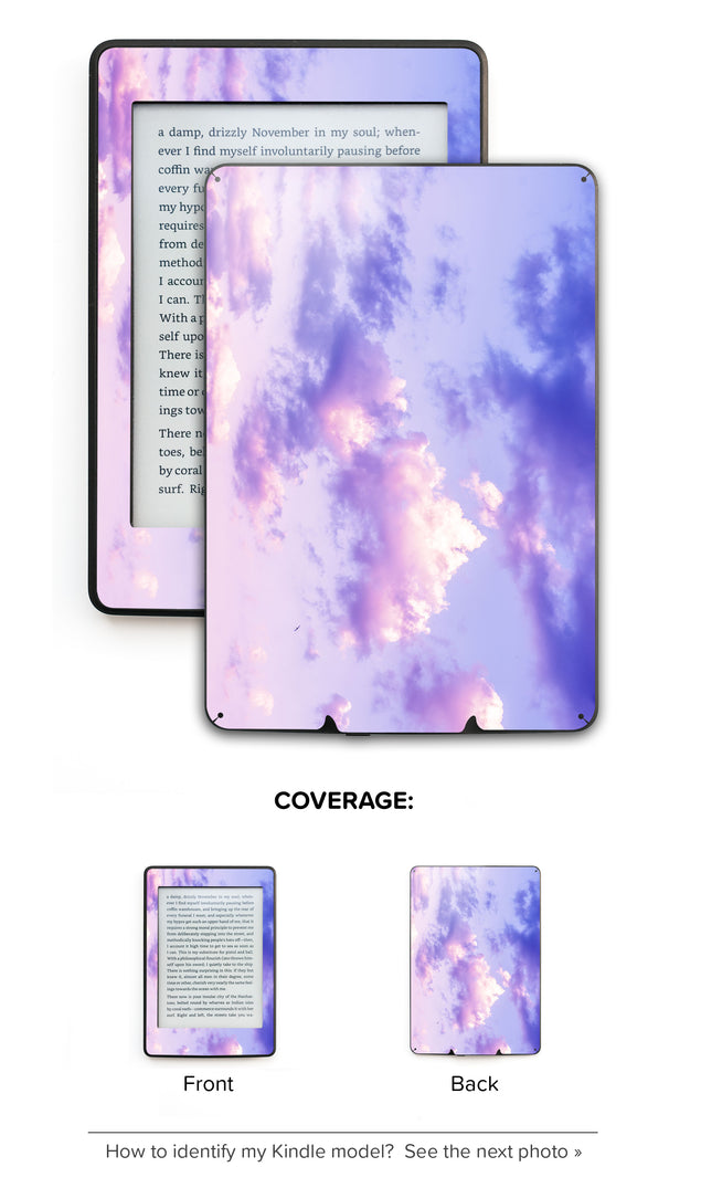 One Bird Sky Kindle Skin