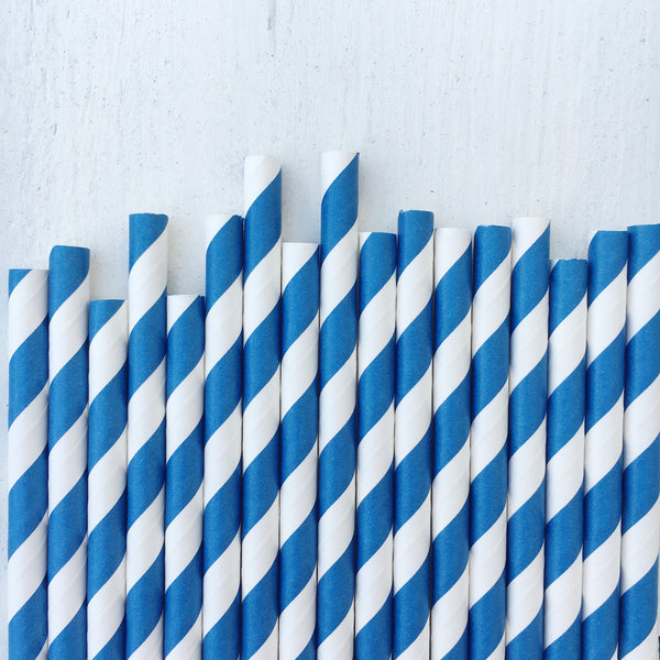 Navy Blue Stripe Paper Straws