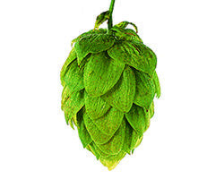 Hops - Saaz Leaf - Noble Grape