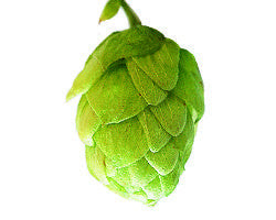 Hops - East Kent Goldings Leaf - Noble Grape