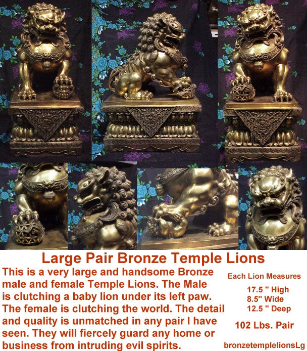 Pair of  Bronze Temple Lions Starting at $79.95