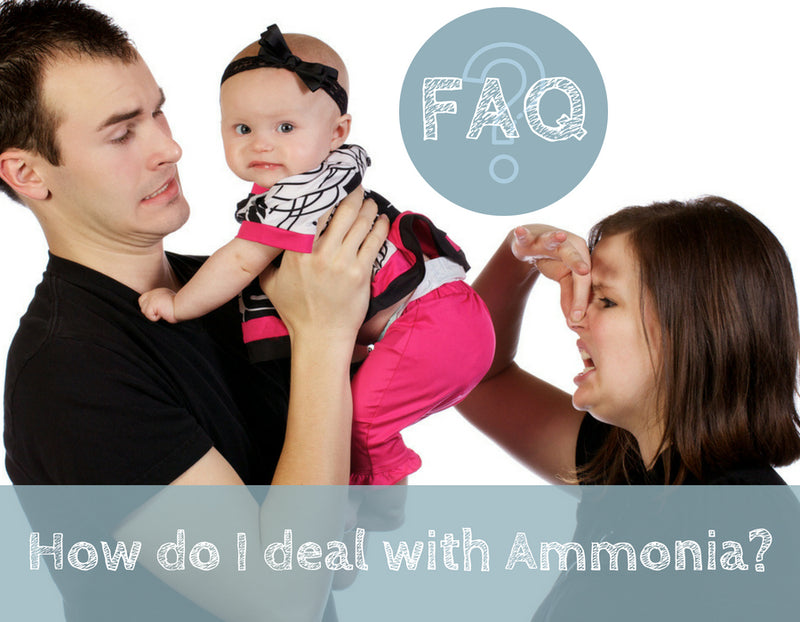 How do I deal with Ammonia?