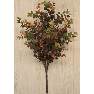 Eucalyptus Berry Bush - 19""