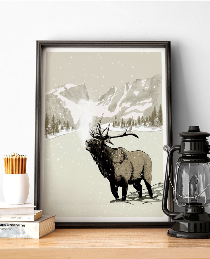 rocky mountains national park poster