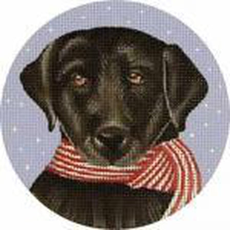 Black Lab with Scarf Needlepoint Canvas