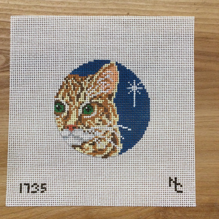 Orange Tabby Glimpse Canvas - needlepoint