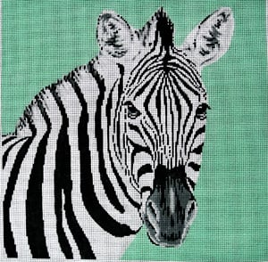 Zebra Canvas-The Meredith Collection-KC Needlepoint