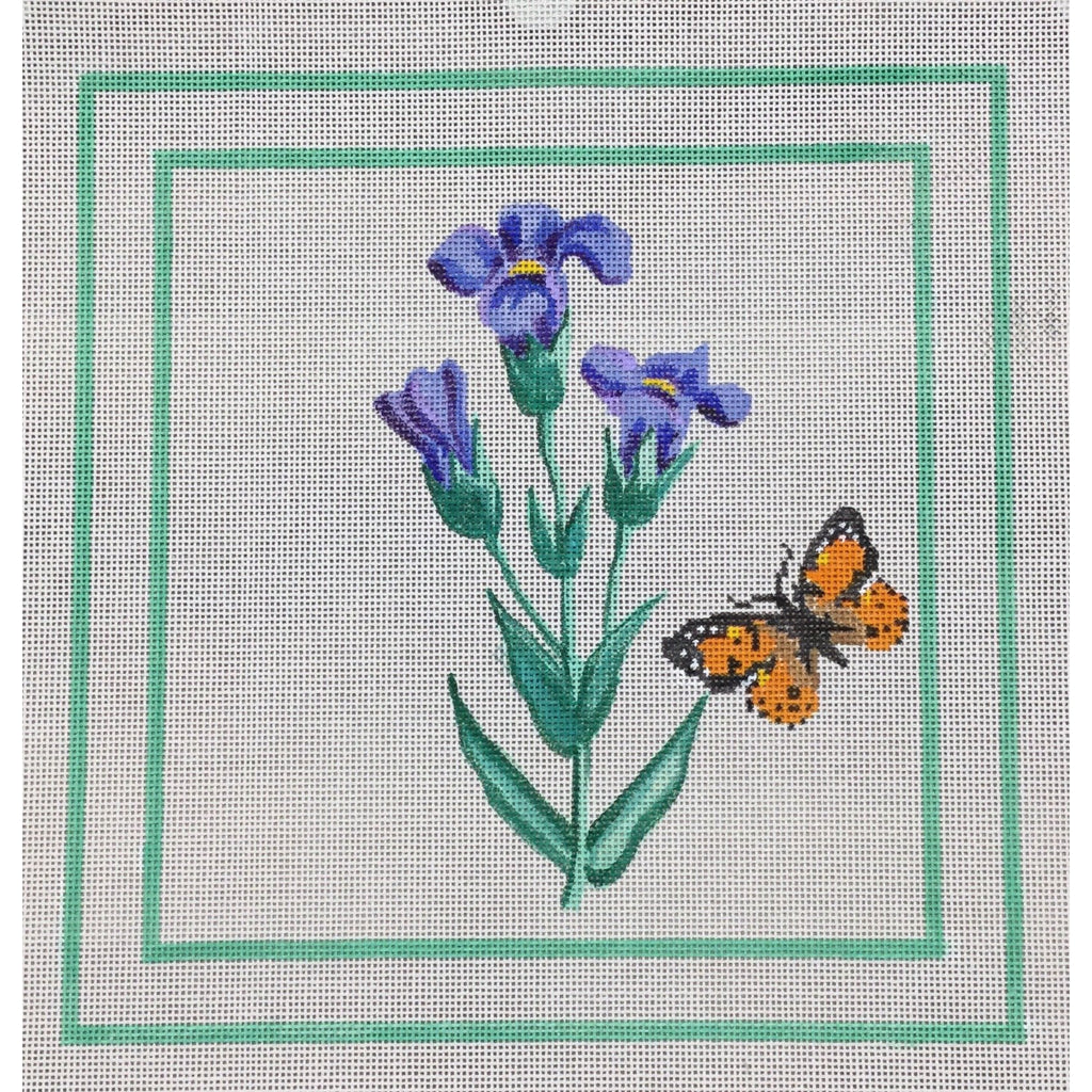 Iris and Butterfly Canvas