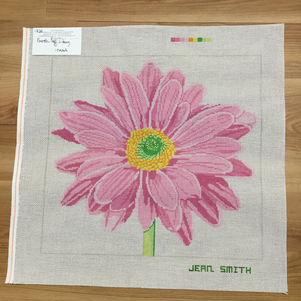 Powder Puff Daisy Canvas - KC Needlepoint