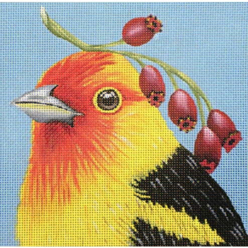 Western Tanager Needlepoint Canvas - needlepoint