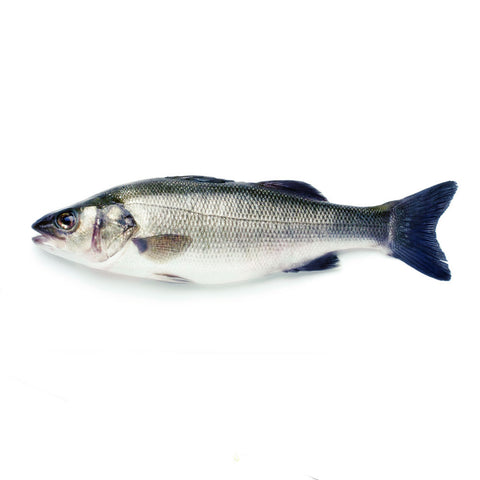 Whole Wild Sea Bass