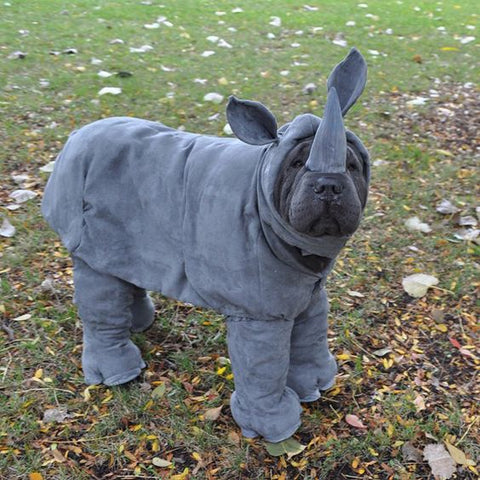 rhino dog costume shar pei