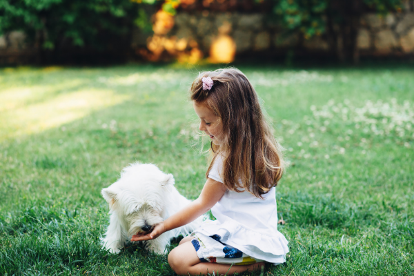 little girl feeding dog