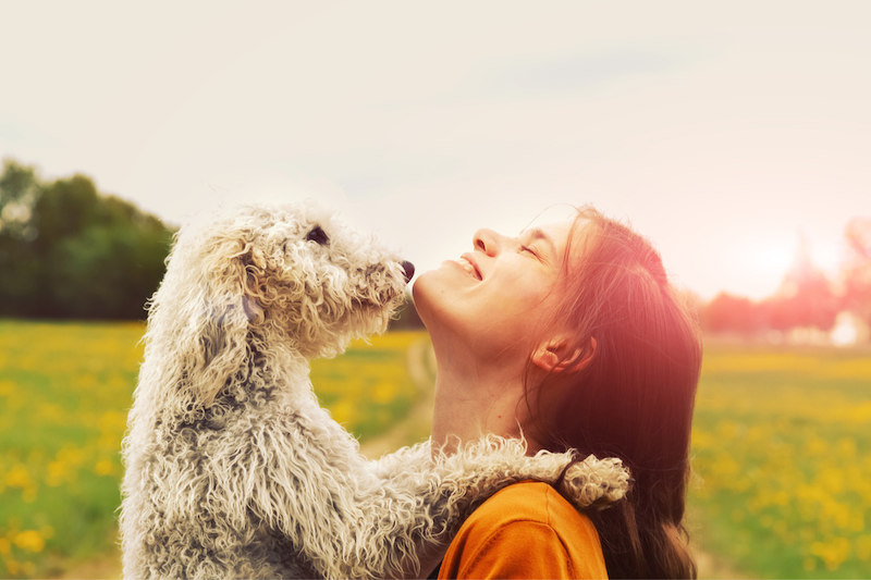 A woman holds her shaggy dog in a field, basking in evening sunlight.