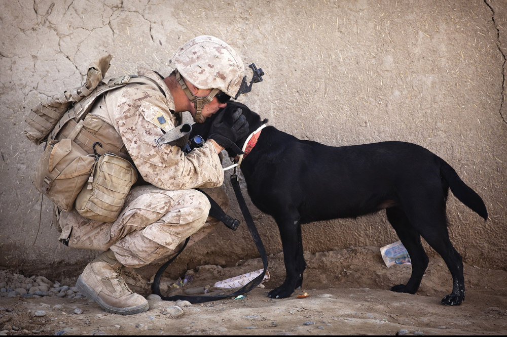 U.S soldier kneeling down and kissing black dog on the head