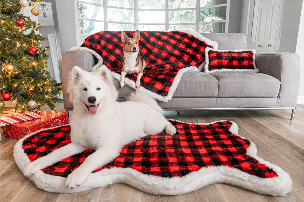 Two dogs sitting next to a Christmas tree