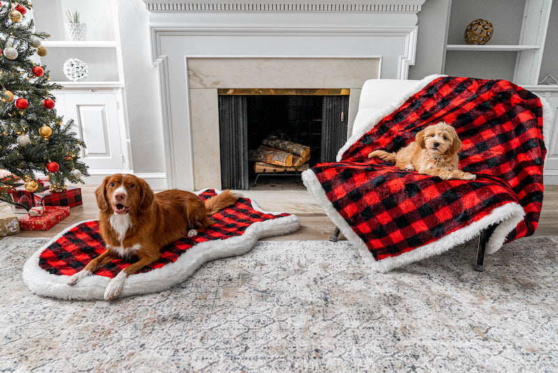 dogs posing on winter plaid memory foam dog bed and cozy matching blanket