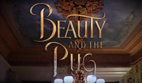 beauty and the pug title