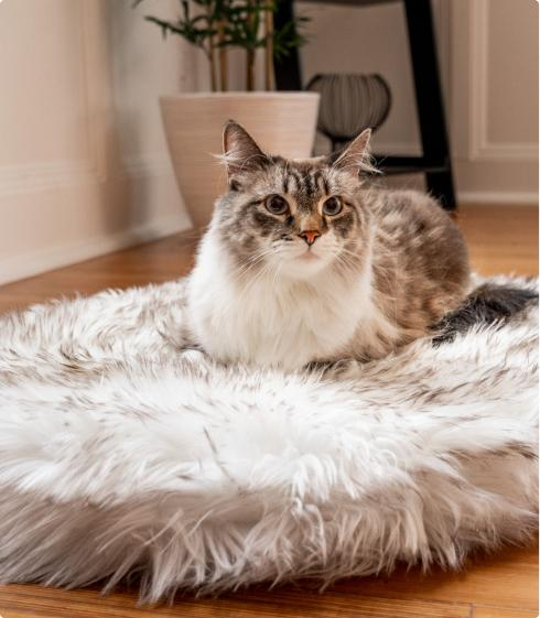 CatNap™ Faux Fur Orthopedic Bed