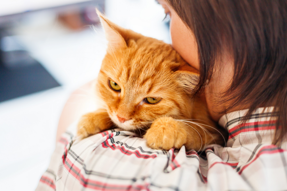 Woman Holding Ginger Cat