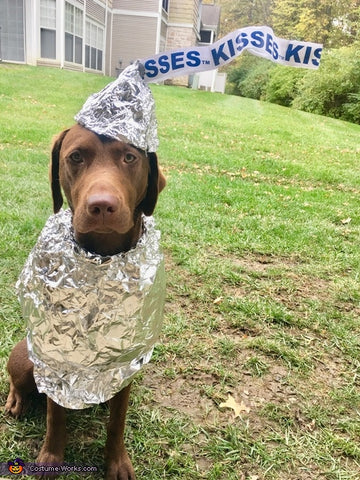 hershey kisses dog costume labrador