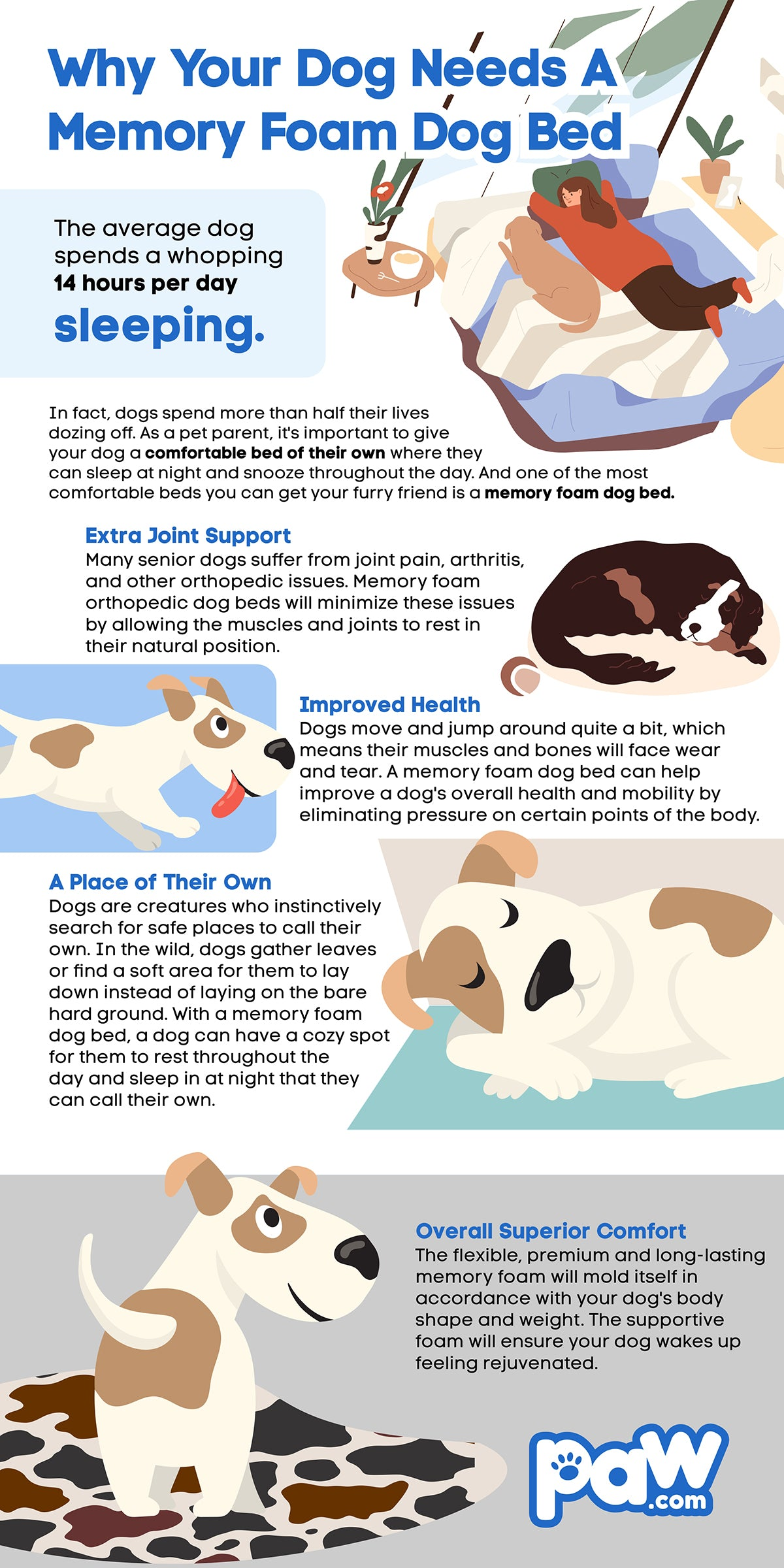Benefits of a Memory Foam Dog Bed